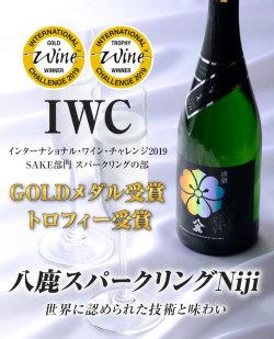 NIJI受賞IWC2019